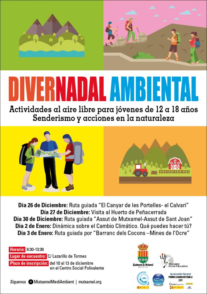 Cartell DiverNadal Ambiental